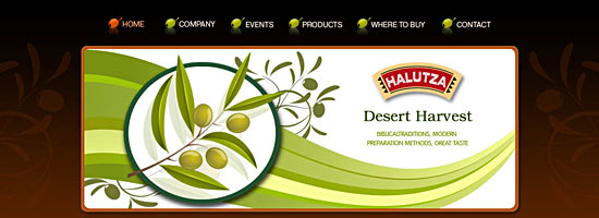 Web design for olive oil manufacturing company